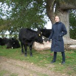 What is it to compare a PhD student and a cow?